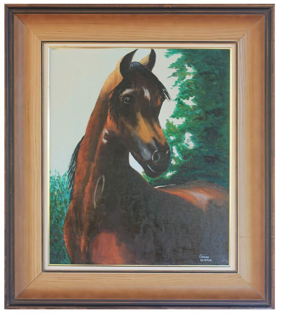 Cavalo-Arabe-50x70